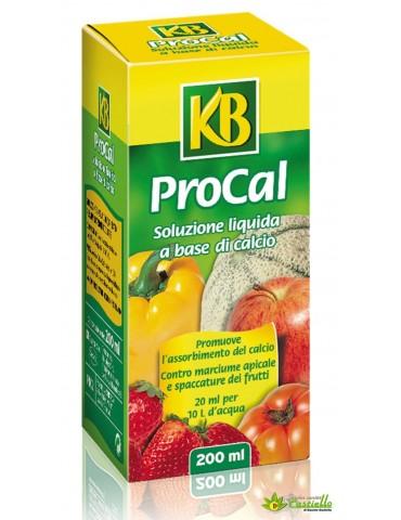 Correttore procal KB -...