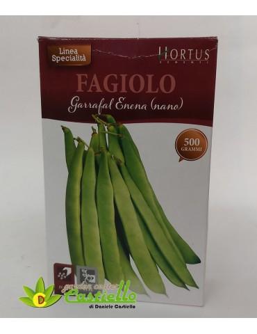 Fagiolo Nano - Garrafal Enena